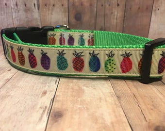 "The Island | Designer 1"" Width Dog Collar | CupcakePups Collars | Pineapples | Medium/Large Dog Collar"