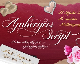 Ambergris Script font - wedding font - modern calligraphy - script - calligraphy - swashes - opentype -photography font - logo font - fonts