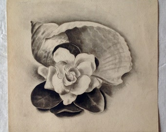 Original Ink Painting of a Sea Shell and Flower by Edloe Risling