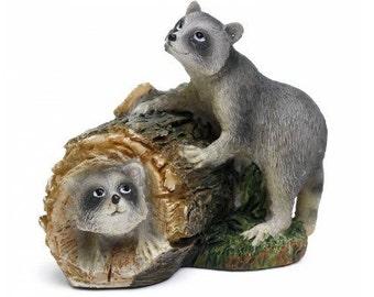 Pesky Raccoons