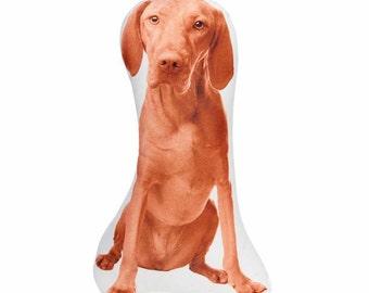 Hungarian Vizsla, Vizsla, Kids Room Decor, Dog Decor, Dog Nursery, Play Room Decor, My Pet, Kids Pet, Novelty Pillow, Dog Loss Gift, Pet