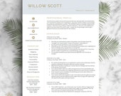 Modern Resume Template for Word and Pages, Modern CV Design, Resume Modern, Instant Download Resume, Professional CV, Modern Two Page Resume
