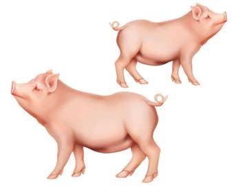 Pig Cutout, Farm Animal Cutout, Pig Template, Stylized Pig Image, Classic Pig,Farm Animal Cutout, Farm Animal Wall Décor Art,Pink Pig Cutout