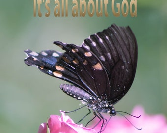 "religious photography wall art butterfly, pink rose, personalize print flower fine art photography ""It's all about God"""