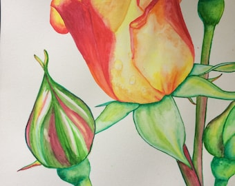 Original Watercolour Yellow Rose Wall Art