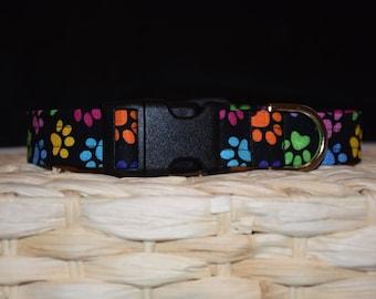 Dog Collar –  Paw Print Dog Collar – Multi Paw Print Dog Collar - Dog Collar with Paw Prints – Everyday Dog Collar