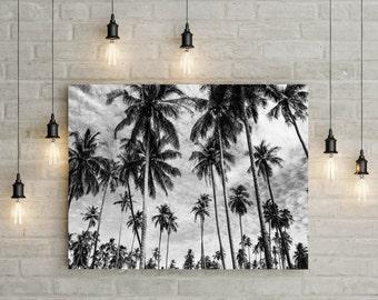 Palm Trees Print, Tropical Print, Wall Art, Palm Print, Wall Decor, Coastal Art, Poster, Palm Photography,Tropical Print, Ocean Print