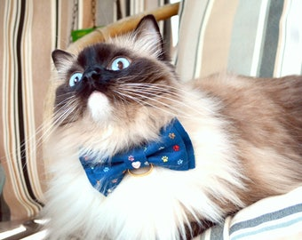 Fancy Cat Bows & Bowties