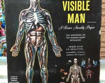 The Visible Man: A Science Assembly Project
