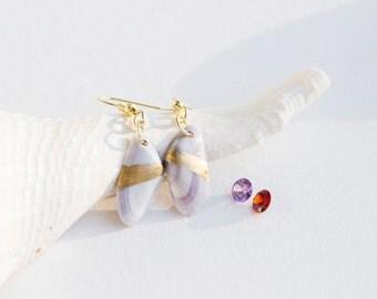 Florida Seashell Earrings   Coquina Shell   Ocean Jewelry