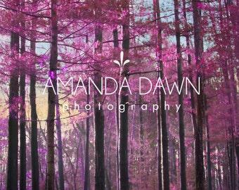 Digital Backdrop, Fantasy, magical, composite, photography, digital background, woods composite, purple backdrop.