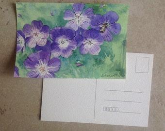 Geranium wallichianum watercolor painting painting postcard card postal flowers flowers