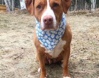 Dog Bandana,Daisy Dukes