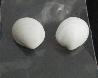 Medium White Seashell Earrings