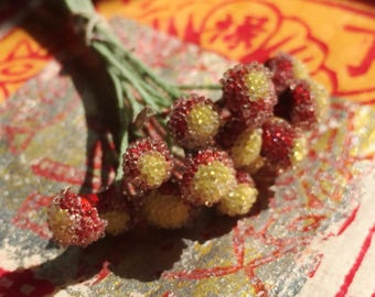 Vintage Millinery Glass Sugar Stamens in Scarlet and Soft Yellow