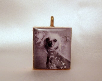 CHINESE CRESTED / Scrabble Pendant / UPCYCLED / Dog Lover Gift Jewelry Necklace