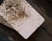 Cardamom Burnt Sugar Soap, Handmade Shea Butter Soap