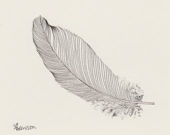 Original ink feather drawing ~ simple, minimal feather drawing