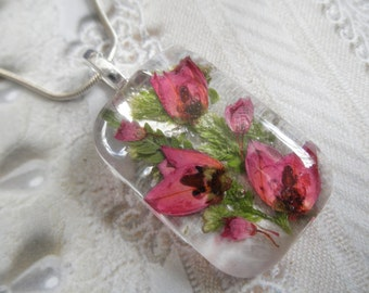 Spring Tulips-Domed Glass Rectangle Pressed Flower Pendant-Ombre Pink Boronia, Pink Heather-Symbolizes Admiration, Solitude