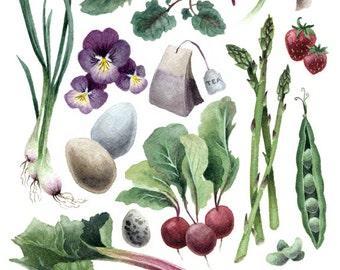 Fine Art Print of Original Watercolor Painting - Springtime Kitchen