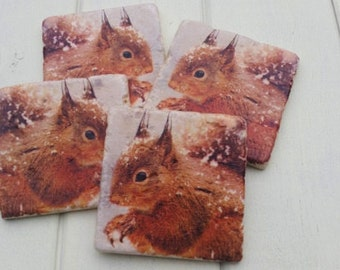 Country Red Squirrel Stone Coaster Set of 4 Tea Coffee Beer Coasters