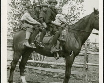 I Told You That FIVE CHILDREN Can All Ride a HORSE At The Same Time Photo circa 1940s