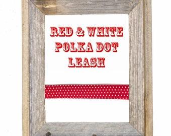 Red & White Polka Dot Dog Leash / Polka Dot Dog Leash / Dog Lead / Red Dog Leash / Dog leash / Matching Leash