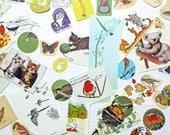 Nature Paper pack, paper ephemera lot, Birds, Animals, Butterflies, 70+ pieces, paper ephemera pack,  journal pack, kids craft pack