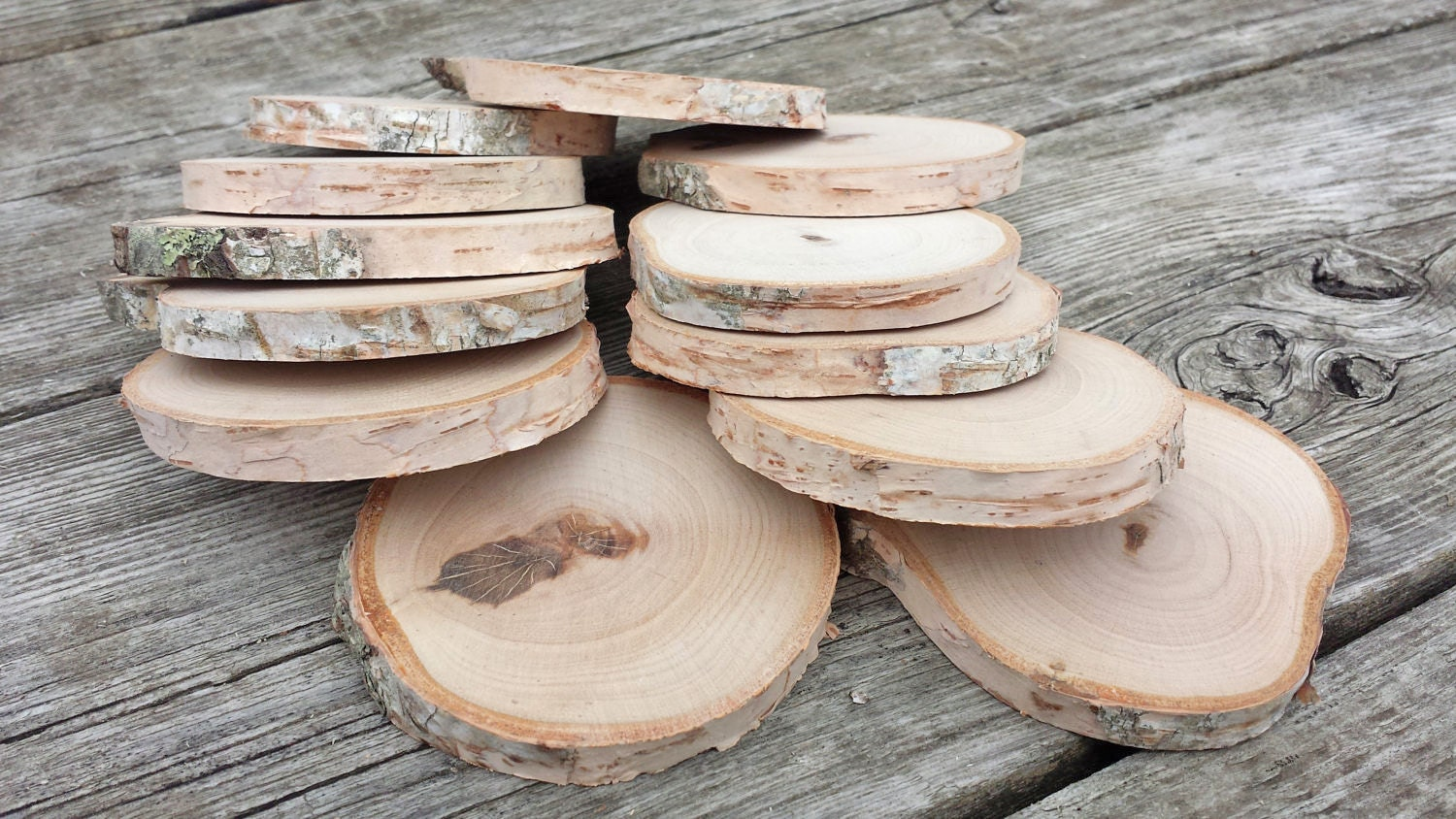 White birch wood slices hand cut and sanded by