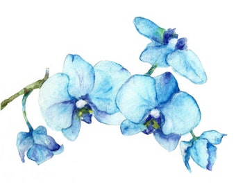 Blue Orchids One - Art Print of watercolor painting 8x10- open edition print- flower spring blue turquoise nature