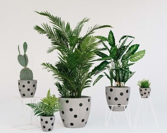 Concrete Planter - Polka Dot Range - Sizes M, L and XL