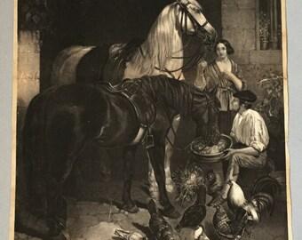 Antique engraving Feeding the Horse John Frederick Herring Black horse White horse Stable scene Chickens pidgeons Hens R Freidanck