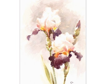 Irises - Original Watercolor Painting 9.5 x 13 inches Mother's Day Flowers