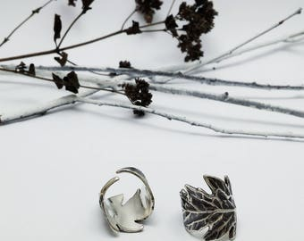 Silver Leaf, Ring, Tomato, Plant, Botanical, Garden, Leaves, Nature, Rustic