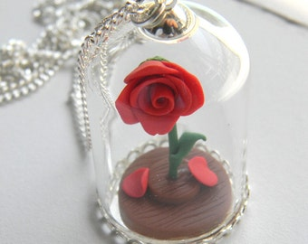 Enchanted Rose, Charmed rose, Beauty and the Beast