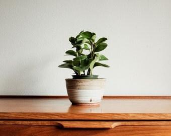 Handmade Ceramic Planter or Bowl Two Toned Vintage