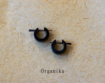 Horn Pair Pin Earrings