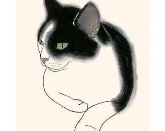 "Cat illustration print -  4 for 3 SALE - Taylor  8.3"" X 11.7"""" print"