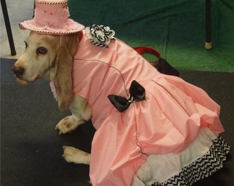 Dog's Victorian/'Steampunk inspired Dress with Hat
