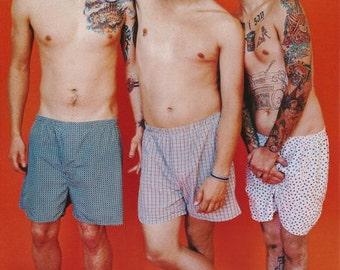 Blink 182 Underwear Band Rare Vintage Poster