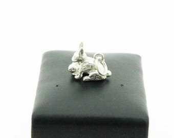 A Cute Rabbit And Baby Silver Charm   SKU984