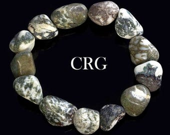 Classic Tumbled 15-20mm Tree Agate Beads Stretch Bracelet (BR59DG)