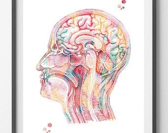 Human head watercolor print Head anatomy poster Brain longitudinal section view print human brain neurology art medical art anatomy art [5]