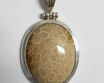 Fossil Coral Pendant #19