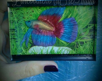Mini acquario Betta fish. Miniature aquarium Betta fish