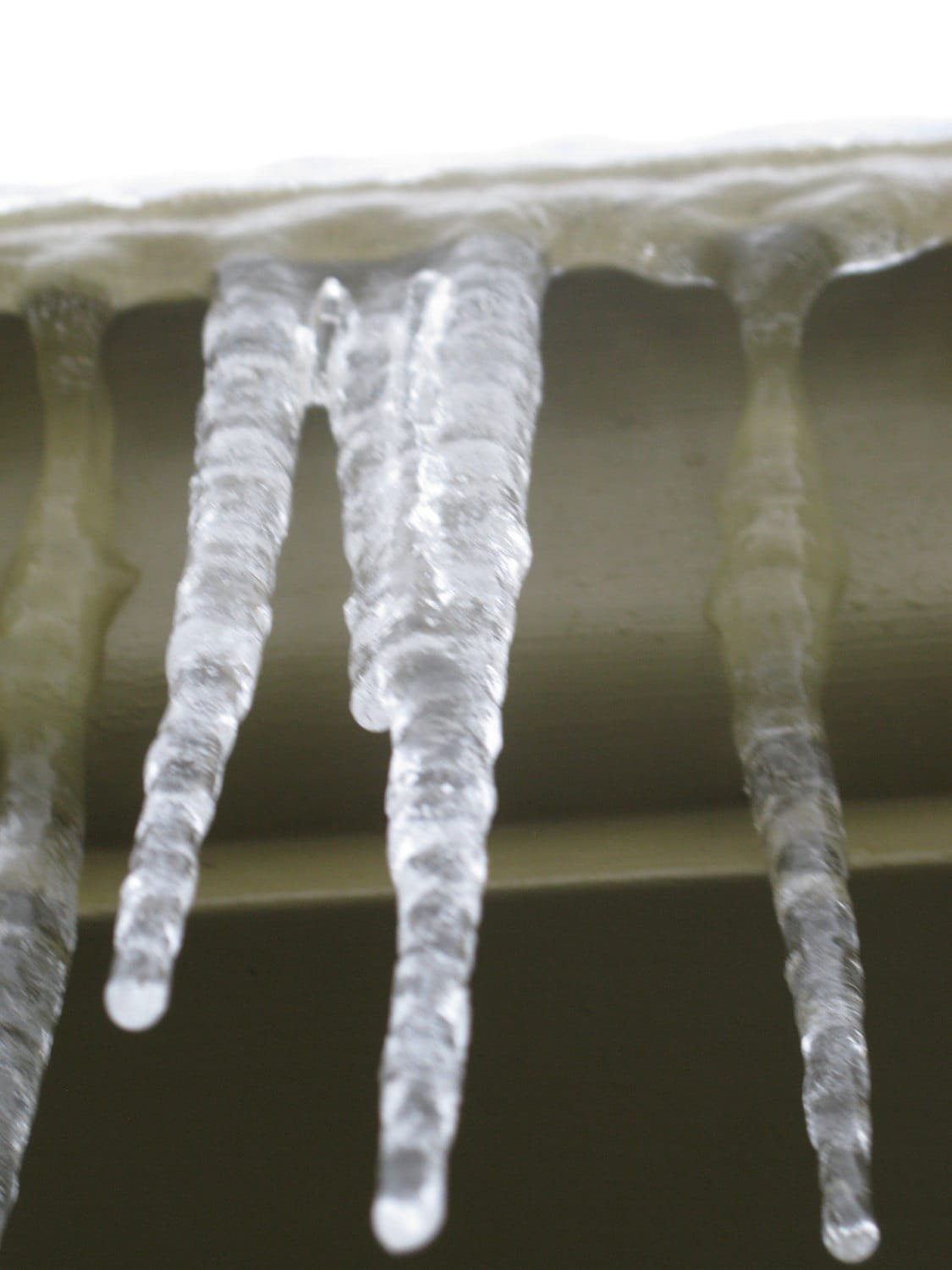 Slightly blurry photo of icicles