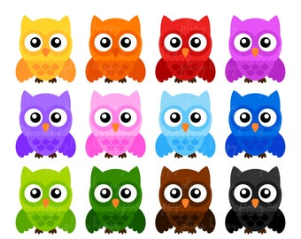 70% OFF Colorful Owl Cliparts, Colorful Owl Clipart Graphics, Personal & Small Commercial Use, Instant Download