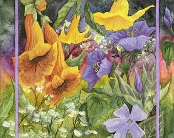 Campsis, Angels Trumpet, Campanula, and Periwinkle P-6062
