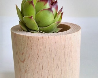 "Set of TWO Mini Flower Pots from wood ""All Natural: Home & Garden"""