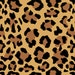 12 x 12 Inch Leopard Craft Vinyl Sheet, Permanent Adhesive 3-5 Year Outdoor Lilly vinyl, Lilly vinyl sheet